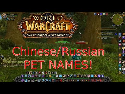 World Of Warcraft Chinese/Russian Pet And Demon Names! 6.2.0