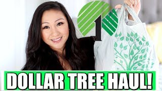 DOLLAR TREE HAUL!  AMAZING NEW FINDS!