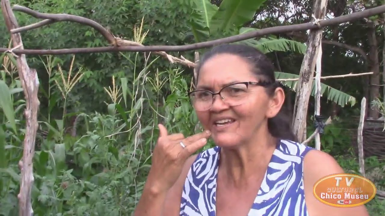 A HORTA E PLANTIO DE MILHO DA MARIA DO CHICÃO ESTÁ UMA MARAVILHA