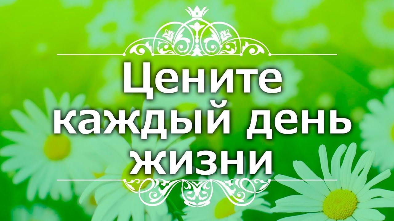 Екатерина Андреева - Цените каждый день жизни
