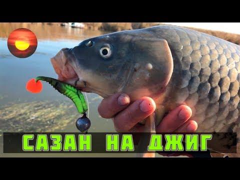 Сазан на джиг / Каспийское море / Ловля сома и судака / Рыбалка с егерем #3