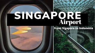 Singapore Airport - Singapore Travel Vlog - Traveling to Singapore - Singapore to Indonesia - Travel