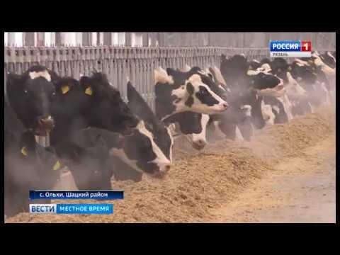 Открытие ЖК «Шацк», Рязанская область