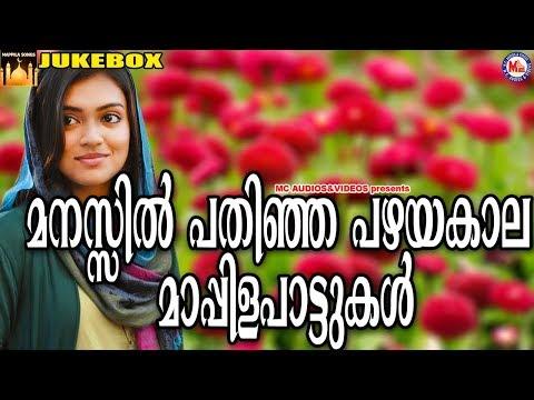 മനസ്സിൽപതിഞ്ഞ പഴയകാല മാപ്പിളപ്പാട്ടുകൾ | Mappila Songs | Mappila Pattukal Malayalam | Mappilapattu