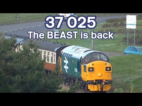 37025: The BEAST is back