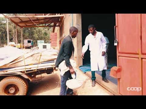 Le parcours de notre café: de la Tanzanie aux rayons Coop