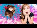 Evil Bear tricks Stella!!!