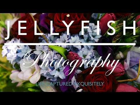 Jellyfish Photography Wedding Montage