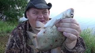 Рыбалка на донки мечта ,хороший клёв леща и отличный улов на сало ,на утренней зорьке.