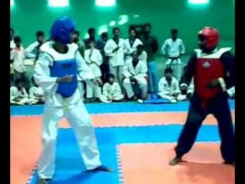 vr.sholin kung-fu:6