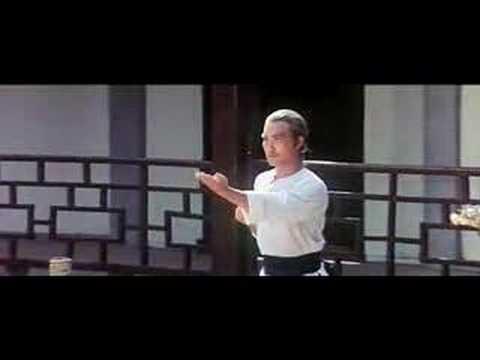 Siu Lim Tao -Leung Jan