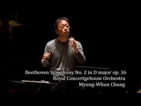 Beethoven Symphony No. 2 in D major op. 36 (Audio)