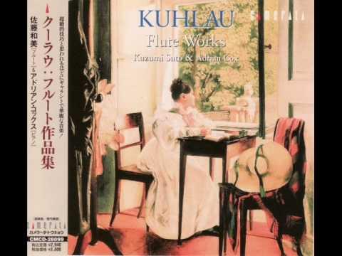 Kuhlau:Grande Sonate Concertante for Piano and Flute Op.85 (1st mov.) - Kazumi Sato
