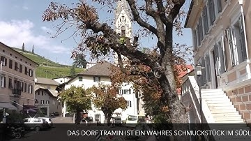 """""""Reisetraum Südtirol""""  Kaltern und Tramin bis  Kurtatsch an der Südtiroler Weinstraße"""