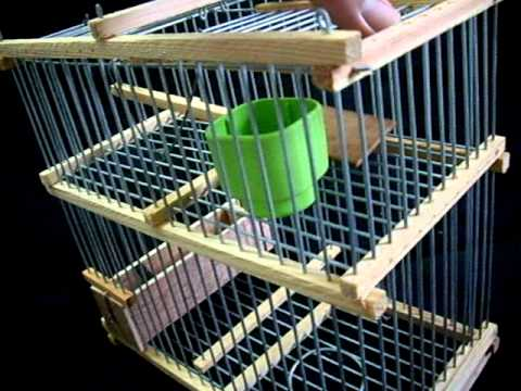 Cage pi ge glissi re a vendre for slae youtube - Cages a oiseaux decoratives ...