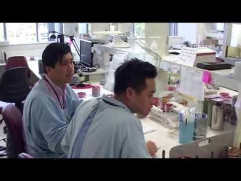 Medical Laboratory Scientist - Try it For 5