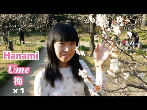 [x1] Kōrakuen [Hanami Ume matsuri, Jardin japonais] [Promenade à pied à Tôkyô] 26/02/2016 [V.Réelle]