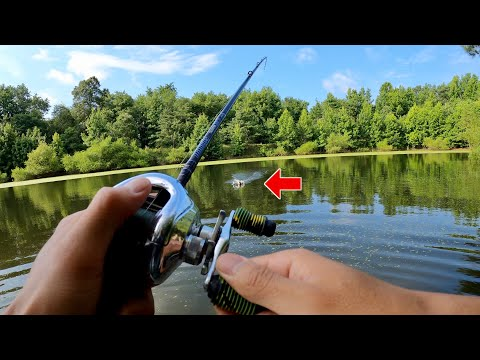 NEW SECRET LURE For SUMMER POND FISHING!!! (Underwater Footage)