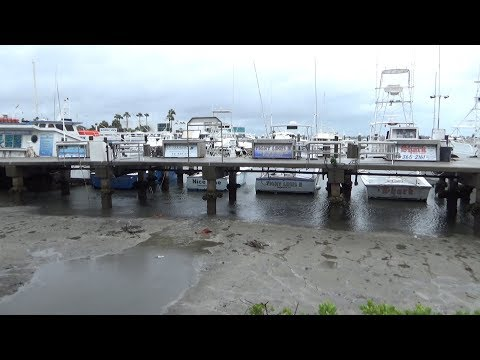 Sarasota, FL Water Drains From Sarasota Bay, Reverse Surge - 9/10/2017