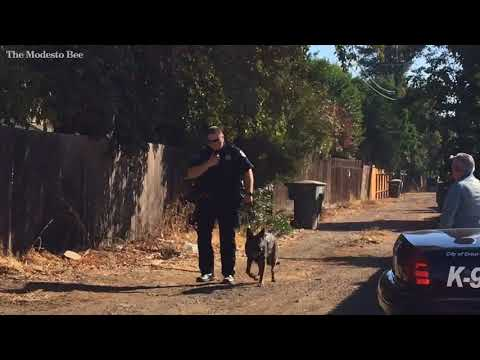 Police capture suspect after search in Central Modesto