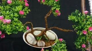 Artificial tree/Artificial bonsai  plant