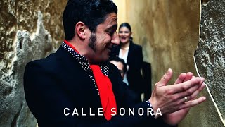 Calle Sonora - David Palomar (Bulería del Duende) - Conciertos Low Cost
