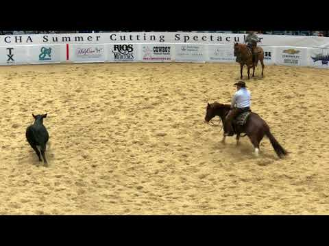 Lee Francois & The Animal-2018 NCHA Derby Open Champions