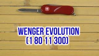 Розпакування Wenger Evolution 1 80 11 300