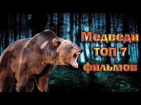 Медведи ТОП 7 лучших фильмов