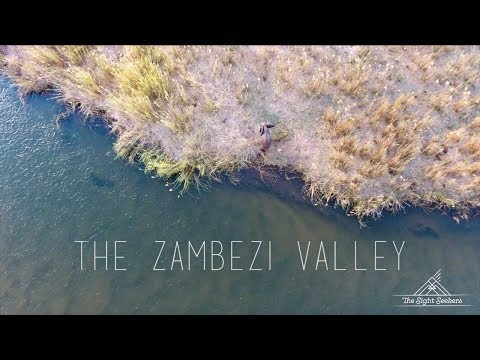 The Search- The Zambezi Valley