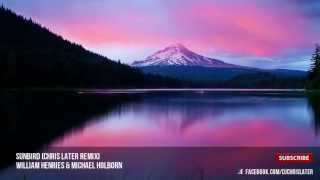 William Henries & Michael Holborn - Sunbird (Chris Later Remix)