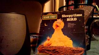 Sleepytime bird - big bird