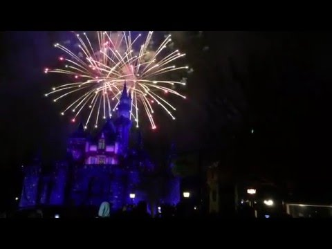 Paint the night parade and fireworks at Disney Land 1/10/16