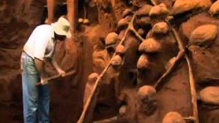 Giant Ant Hill Excavated
