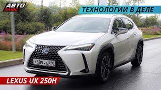Обновленный  Lexus UX 250h 2019