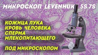 Тестируем микроскоп Levenhuk 5S NG и 7S NG