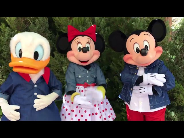 Mickey, Minnie, and Donald talking at Disney's California Adventure: PlayTest!