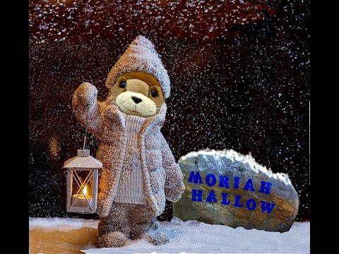 Noam, winter home at Moriah Hallow