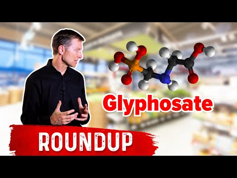 The Food With the Highest Glyphosate (Roundup)