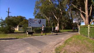 7wawe Ep7 West Coast Pet Care Centre  Pet Hotel