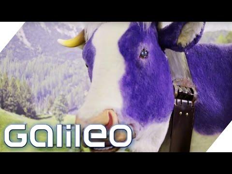 Milka - eine Erfolgsstory | Galileo | ProSieben
