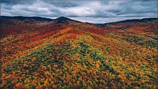 Adirondack Autumn Foliage (4K)