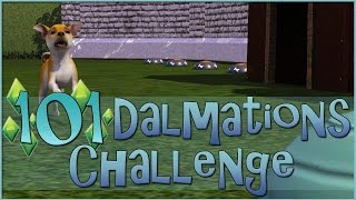 Some Serious Puppy Training!! • Sims 3: 101 Dalmatians Challenge  - Episode #97