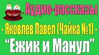 Две Чайки - Аудио-рассказы - Павел Яковлев - Ежик и Манул