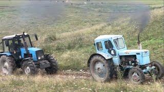 Гонки на Тракторах  Трактор Беларус против Т40