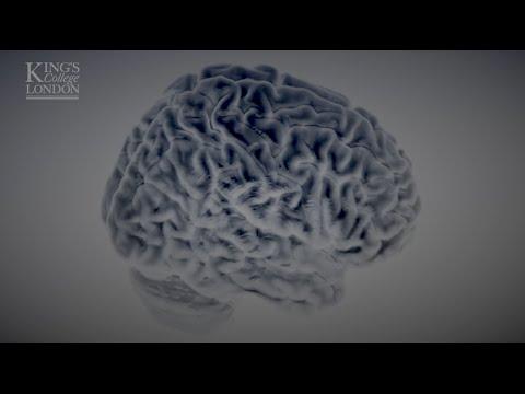 How neuroimaging helps us understand addiction