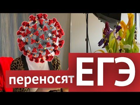 Новости: из-за коронавируса переносят ЕГЭ