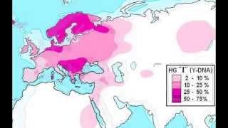 Haplogroup I (Y-DNA)