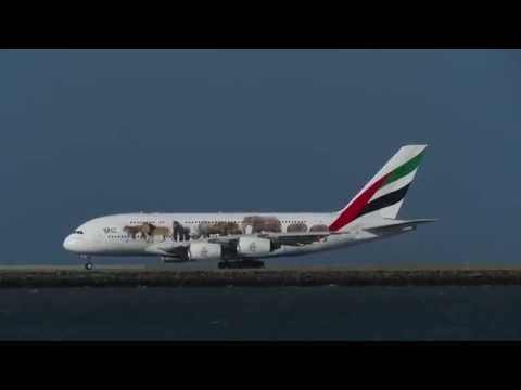 "Emirates Airlines ""Wildlife"" A380 Departing San Francisco [HD] - September 3, 2016"