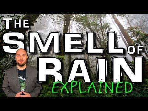 explained:-smell-of-rain-(redux)